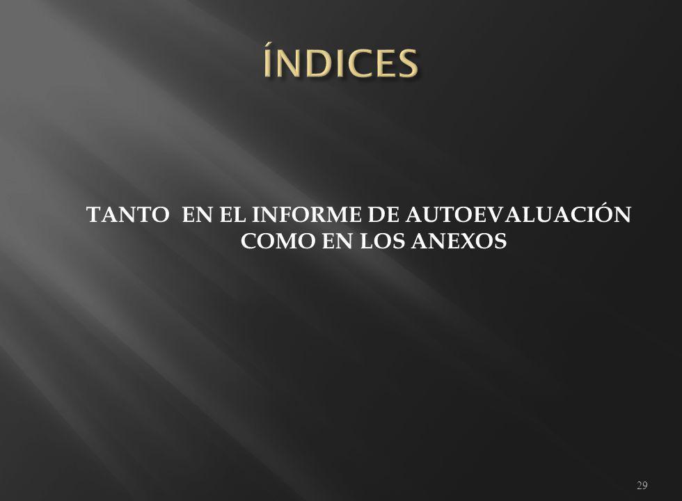 TANTO EN EL INFORME DE AUTOEVALUACIÓN COMO EN LOS ANEXOS 29