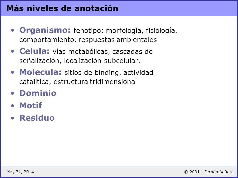 May 31, 2014© 2001 - Fernán Agüero Más niveles de anotación Organismo: fenotipo: morfología, fisiología, comportamiento, respuestas ambientales Celula