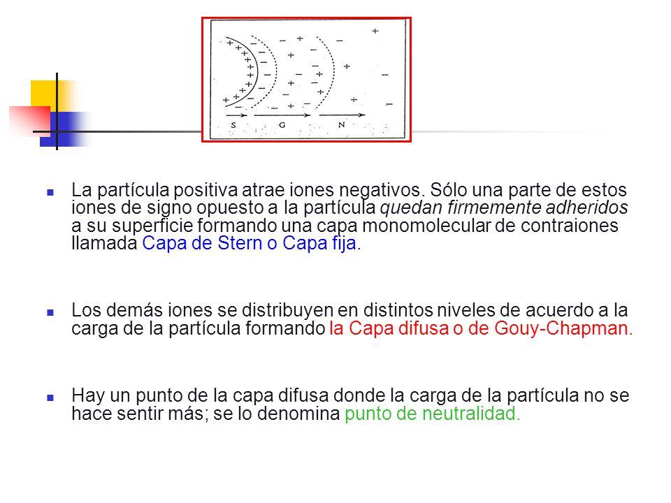 La partícula positiva atrae iones negativos. Sólo una parte de estos iones de signo opuesto a la partícula quedan firmemente adheridos a su superficie