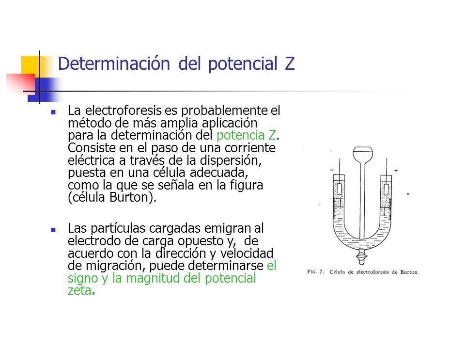 Determinación del potencial Z La electroforesis es probablemente el método de más amplia aplicación para la determinación del potencia Z. Consiste en