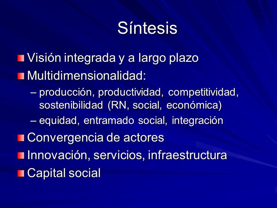 Síntesis Visión integrada y a largo plazo Multidimensionalidad: –producción, productividad, competitividad, sostenibilidad (RN, social, económica) –eq