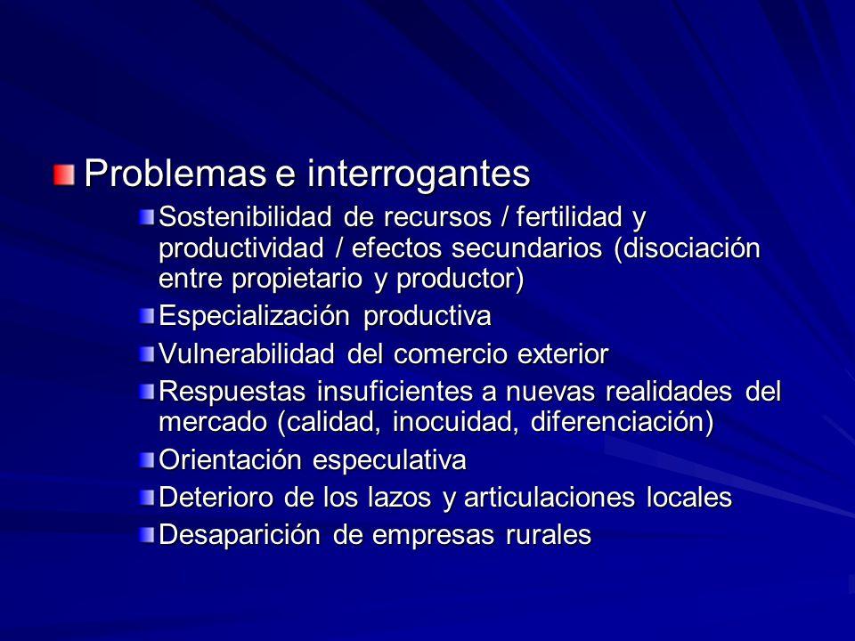 Problemas e interrogantes Sostenibilidad de recursos / fertilidad y productividad / efectos secundarios (disociación entre propietario y productor) Es
