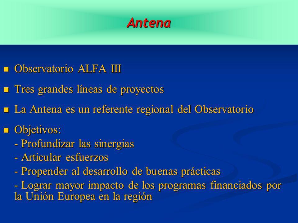 Observatorio ALFA III Observatorio ALFA III Tres grandes líneas de proyectos Tres grandes líneas de proyectos La Antena es un referente regional del Observatorio La Antena es un referente regional del Observatorio Objetivos: Objetivos: - Profundizar las sinergias - Articular esfuerzos - Propender al desarrollo de buenas prácticas - Lograr mayor impacto de los programas financiados por la Unión Europea en la región Antena