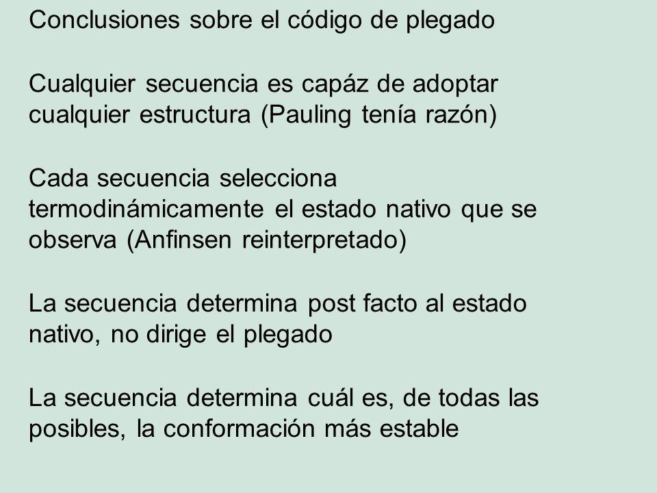 Conclusiones sobre el código de plegado Cualquier secuencia es capáz de adoptar cualquier estructura (Pauling tenía razón) Cada secuencia selecciona termodinámicamente el estado nativo que se observa (Anfinsen reinterpretado) La secuencia determina post facto al estado nativo, no dirige el plegado La secuencia determina cuál es, de todas las posibles, la conformación más estable