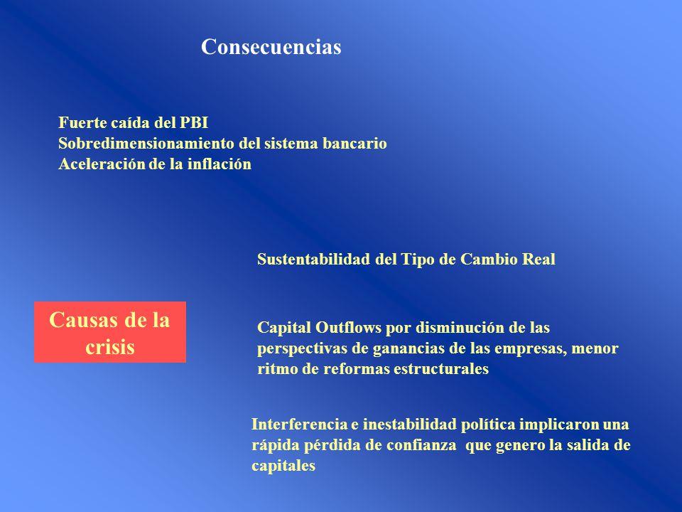 Consecuencias Fuerte caída del PBI Sobredimensionamiento del sistema bancario Aceleración de la inflación Causas de la crisis Sustentabilidad del Tipo