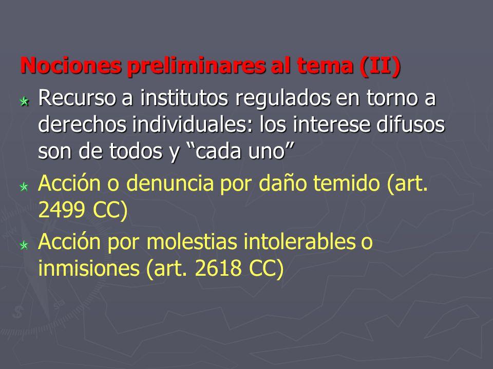 Nociones preliminares al tema (II) Recurso a institutos regulados en torno a derechos individuales: los interese difusos son de todos y cada uno Acció