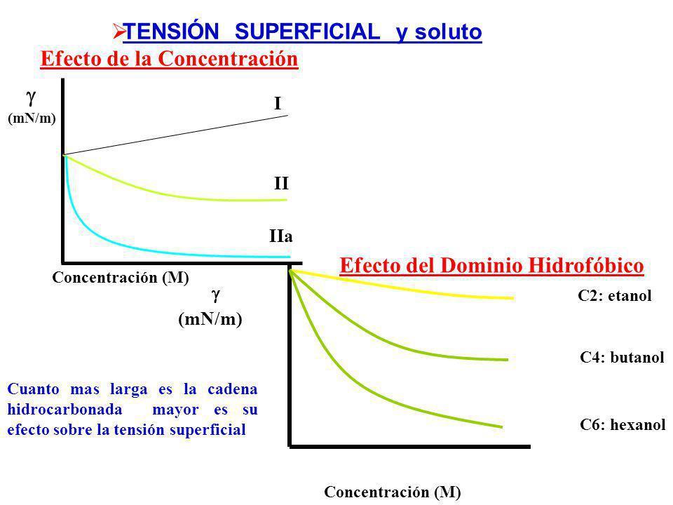 TIPO ITIPO II Se concentran en la interfaseSon excluídos de la interfase Aumentan Disminuyen Adsorción negativa Adsorción positiva TENSIÓN SUPERFICIAL