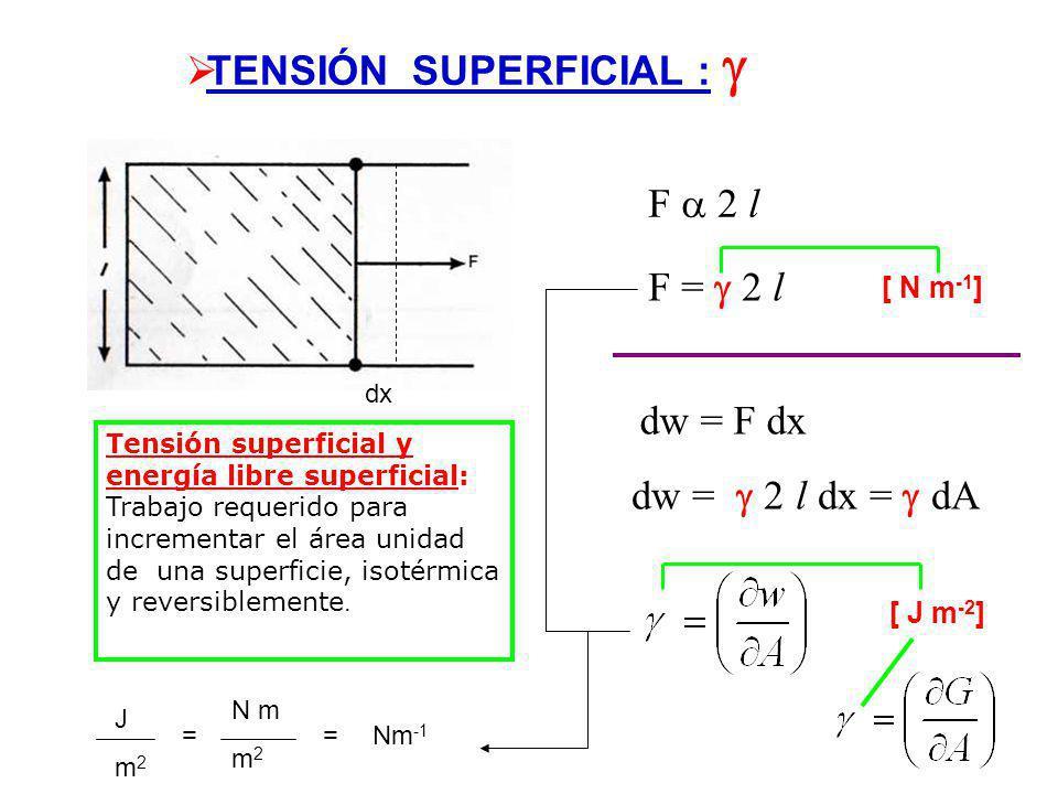 TENSIÓN SUPERFICIAL : F 2 l F = 2 l dx [ N m -1 ] dw = F dx dw = 2 l dx = dA [ J m -2 ] Tensión superficial y energía libre superficial: Trabajo requerido para incrementar el área unidad de una superficie, isotérmica y reversiblemente.