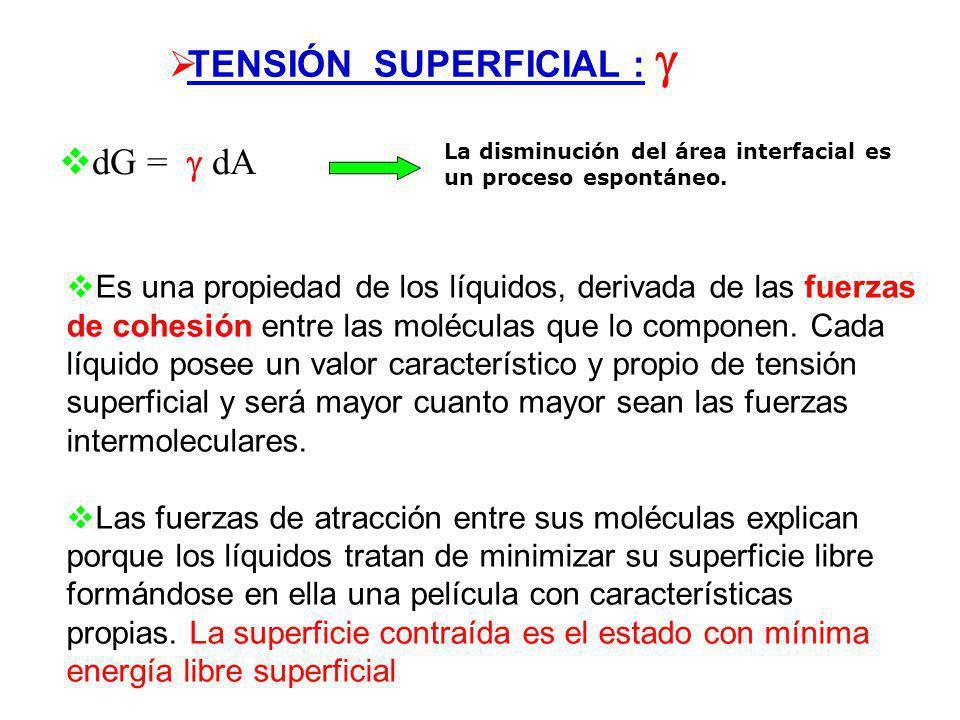 TENSIÓN SUPERFICIAL : F 2 l F = 2 l dx [ N m -1 ] dw = F dx dw = 2 l dx = dA [ J m -2 ] Tensión superficial y energía libre superficial: Trabajo reque