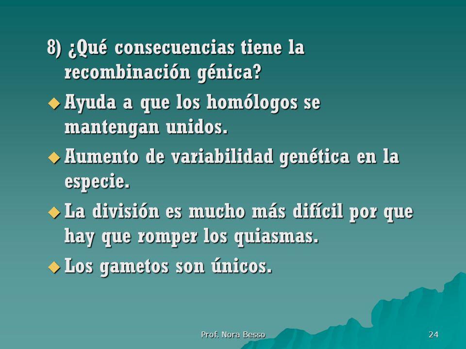 Prof.Nora Besso 24 8) ¿Qué consecuencias tiene la recombinación génica.