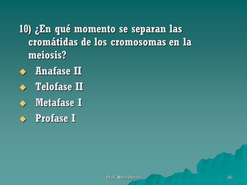 Prof.Nora Besso 26 10) ¿En qué momento se separan las cromátidas de los cromosomas en la meiosis.