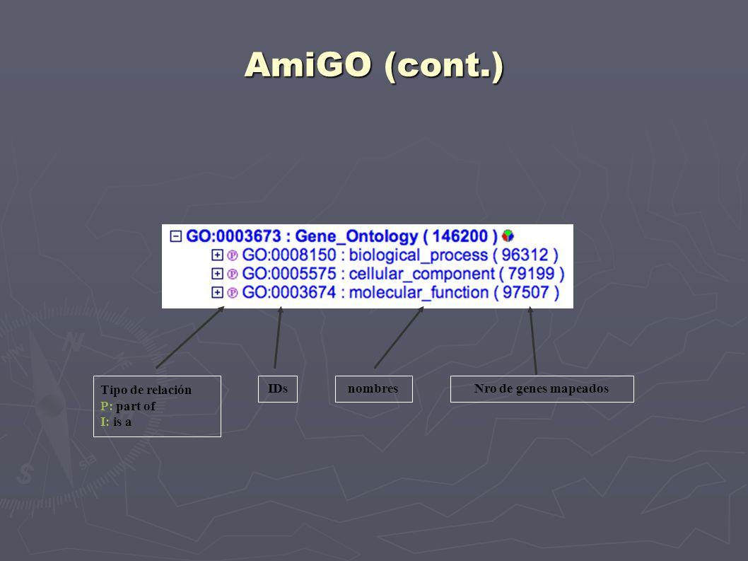 AmiGO (cont.) Nro de genes mapeados Tipo de relación P: part of I: is a IDsnombres