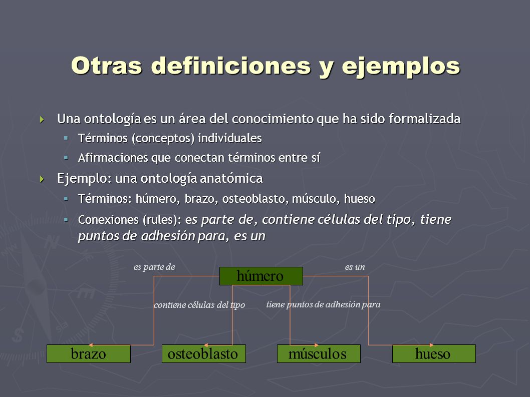 Otros componentes Cada término en una ontología está asociado a: Cada término en una ontología está asociado a: un identificador único: GO:0019505 un identificador único: GO:0019505 Un nombre: resorcinol metabolism Un nombre: resorcinol metabolism Una definición: the chemical reactions and physical changes involving resorcinol (C 6 H 4 (OH) 2 ), a benzene derivative with many applications (including dyes, explosives, resins and as an antiseptic) Una definición: the chemical reactions and physical changes involving resorcinol (C 6 H 4 (OH) 2 ), a benzene derivative with many applications (including dyes, explosives, resins and as an antiseptic) Sinónimos: 1,3-benzenediol metabolism; 1,3-dihydroxybenzene metabolism Sinónimos: 1,3-benzenediol metabolism; 1,3-dihydroxybenzene metabolism