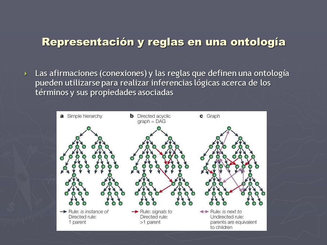 Representación y reglas en una ontología Las afirmaciones (conexiones) y las reglas que definen una ontología pueden utilizarse para realizar inferenc