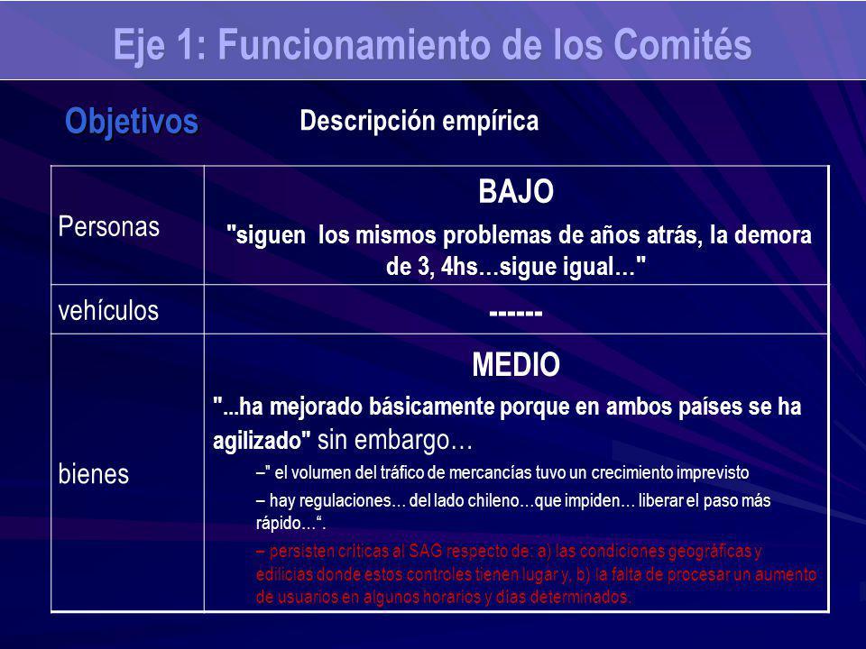 Eje 1: Funcionamiento de los Comités Personas BAJO