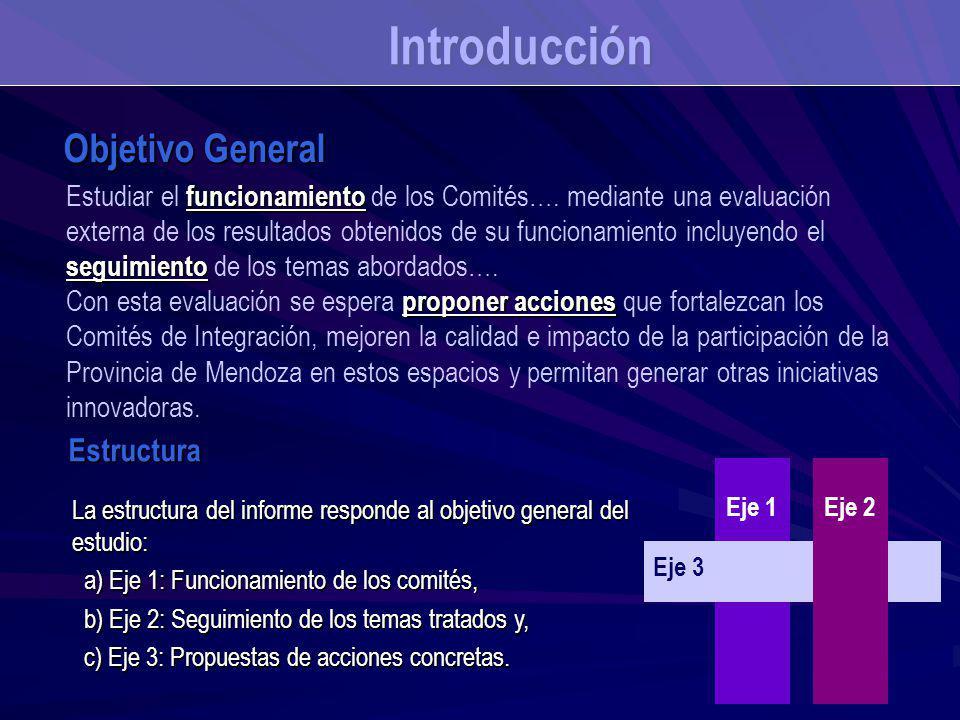funcionamiento seguimiento Estudiar el funcionamiento de los Comités…. mediante una evaluación externa de los resultados obtenidos de su funcionamient