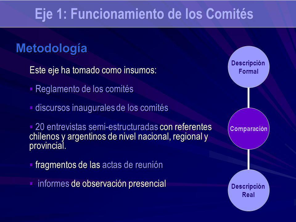 Este eje ha tomado como insumos: Reglamento de los comités Reglamento de los comités discursos inaugurales de los comités discursos inaugurales de los comités 20 entrevistas semi-estructuradas con referentes chilenos y argentinos de nivel nacional, regional y provincial.