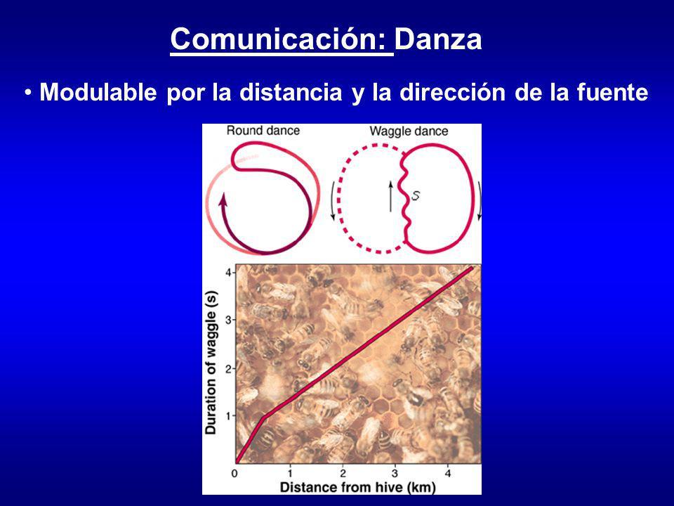 Modulable por la distancia y la dirección de la fuente