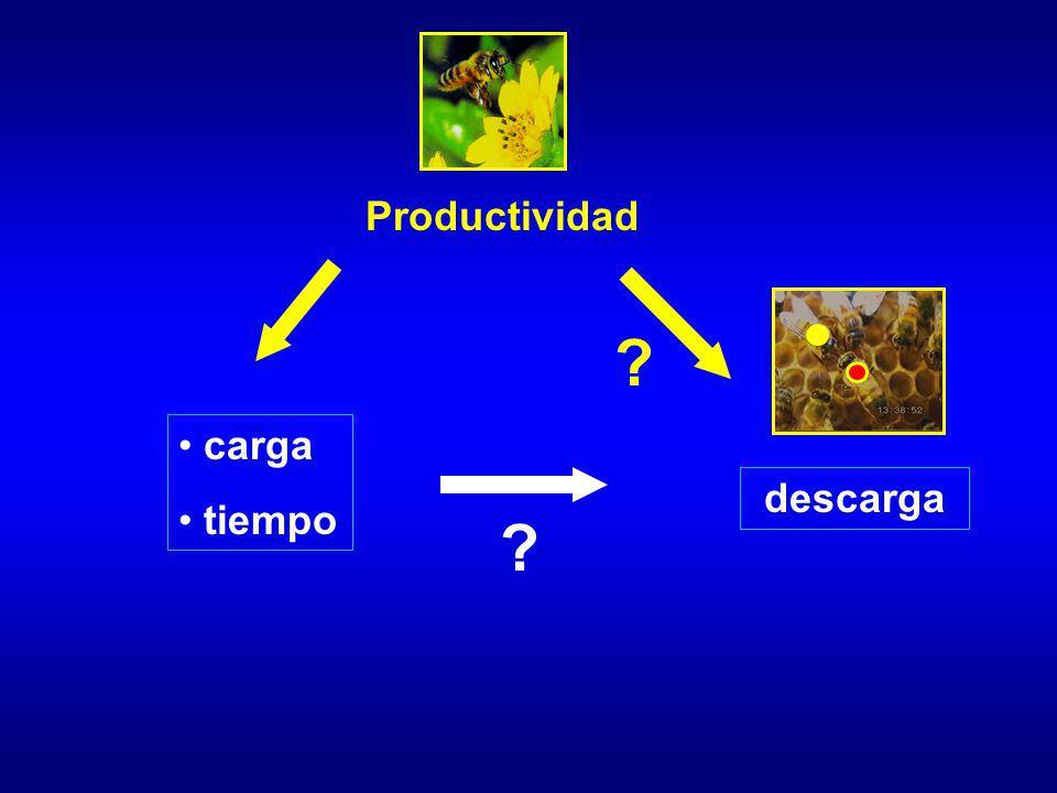 Productividad carga tiempo ? descarga ?