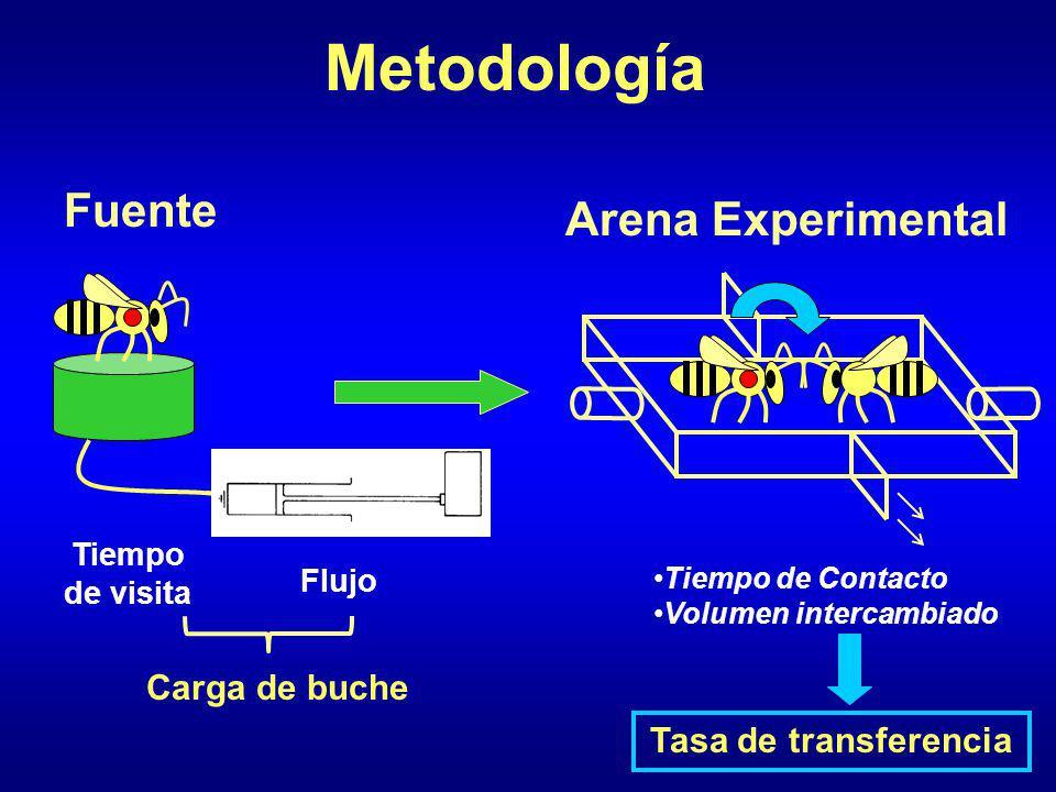 Metodología Fuente Arena Experimental Tiempo de Contacto Volumen intercambiado Tiempo de visita Flujo Carga de buche Tasa de transferencia