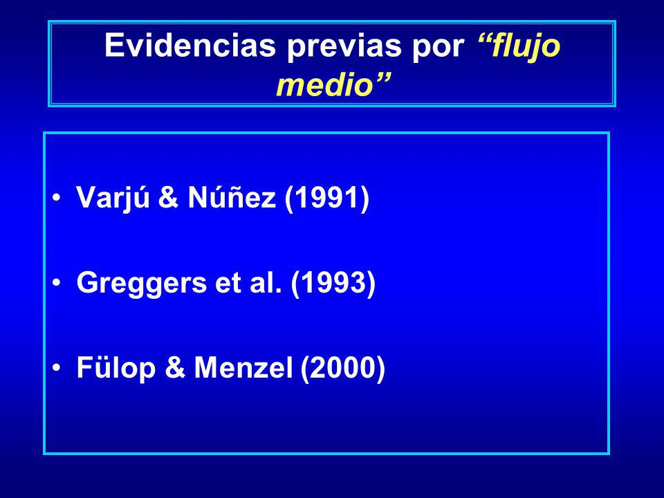 Evidencias previas por flujo medio Varjú & Núñez (1991) Greggers et al. (1993) Fülop & Menzel (2000)