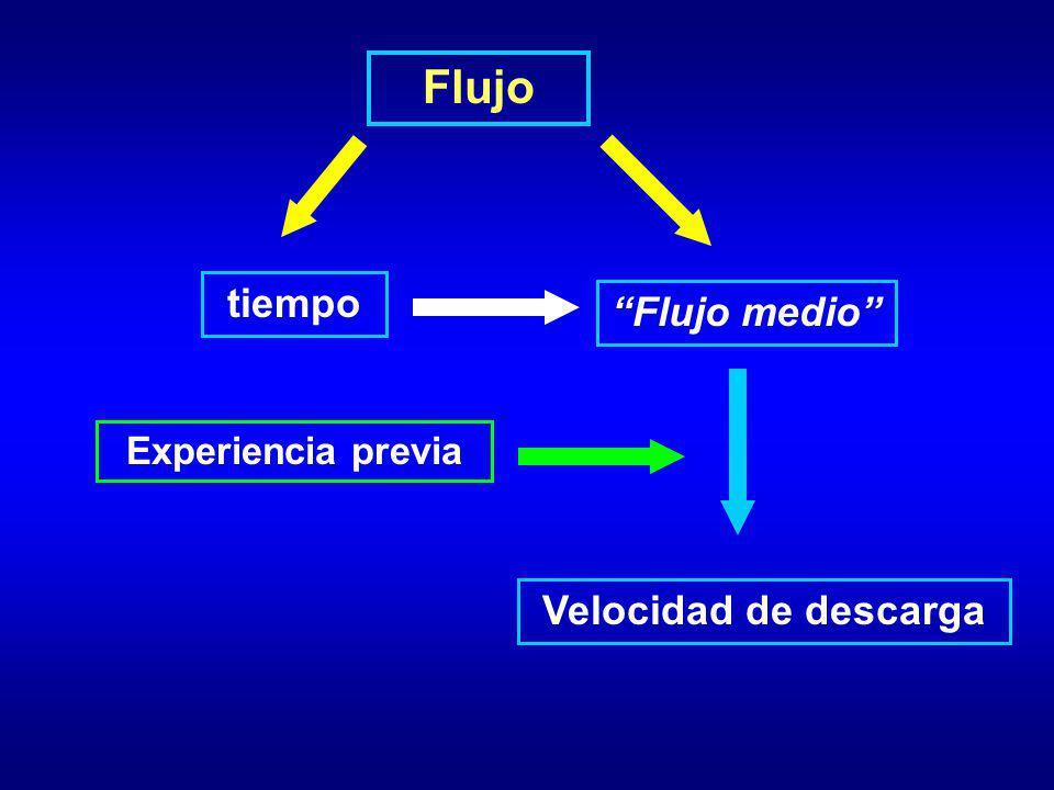 Flujo Velocidad de descarga tiempo Flujo medio Experiencia previa
