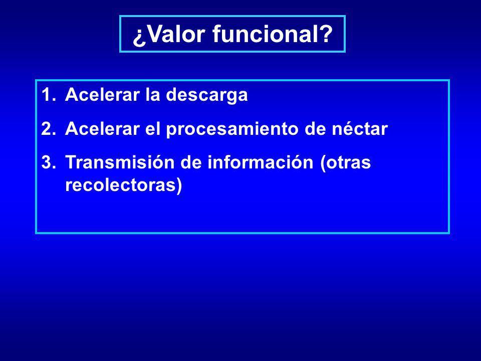 ¿Valor funcional? 1.Acelerar la descarga 2.Acelerar el procesamiento de néctar 3.Transmisión de información (otras recolectoras)