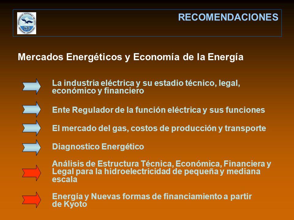 Mercados Energéticos y Economía de la Energía RECOMENDACIONES La industria eléctrica y su estadio técnico, legal, económico y financiero Ente Regulador de la función eléctrica y sus funciones El mercado del gas, costos de producción y transporte Diagnostico Energético Análisis de Estructura Técnica, Económica, Financiera y Legal para la hidroelectricidad de pequeña y mediana escala Energía y Nuevas formas de financiamiento a partir de Kyoto