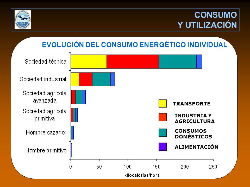 EVOLUCIÓN DEL CONSUMO ENERGÉTICO INDIVIDUAL CONSUMO Y UTILIZACIÓN INDUSTRIA Y AGRICULTURA TRANSPORTE CONSUMOS DOMÉSTICOS ALIMENTACIÓN