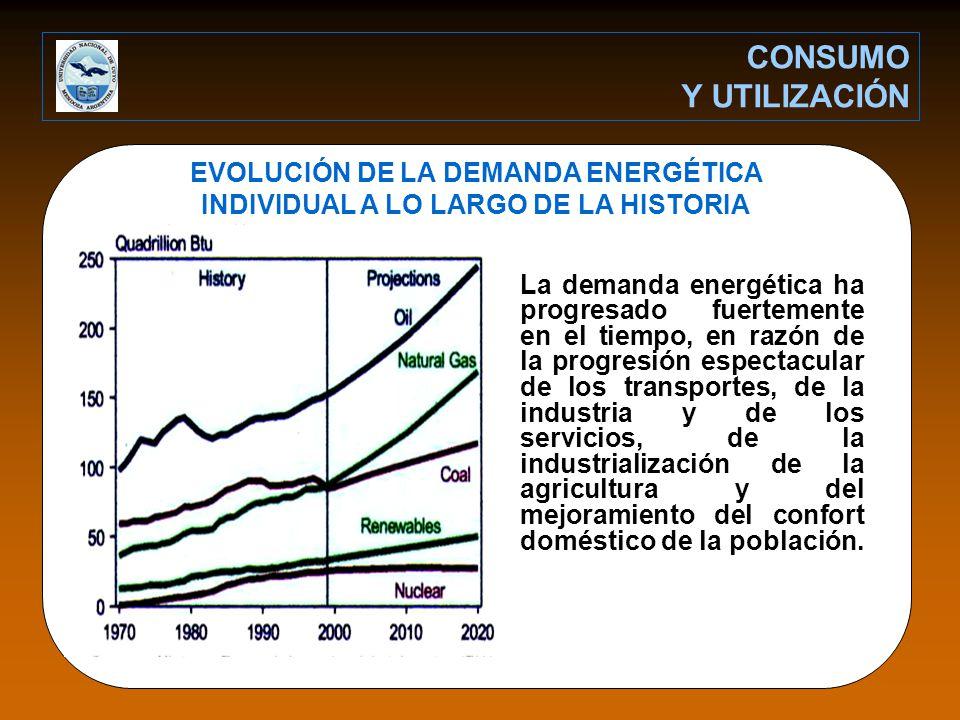 EVOLUCIÓN DE LA DEMANDA ENERGÉTICA INDIVIDUAL A LO LARGO DE LA HISTORIA La demanda energética ha progresado fuertemente en el tiempo, en razón de la progresión espectacular de los transportes, de la industria y de los servicios, de la industrialización de la agricultura y del mejoramiento del confort doméstico de la población.