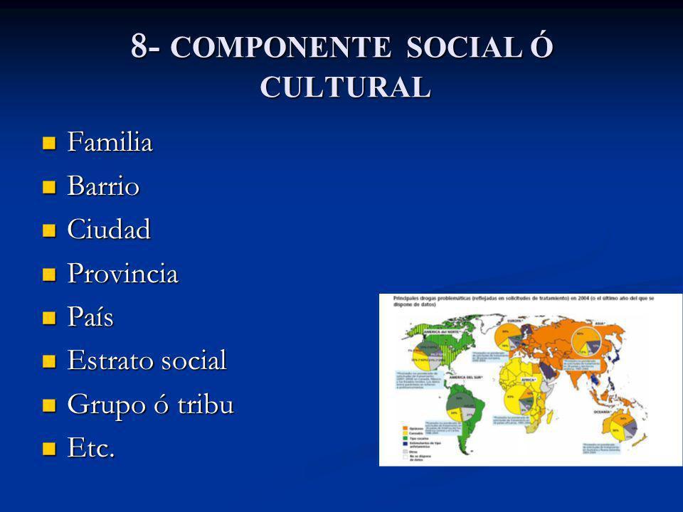 8- COMPONENTE SOCIAL Ó CULTURAL Familia Familia Barrio Barrio Ciudad Ciudad Provincia Provincia País País Estrato social Estrato social Grupo ó tribu
