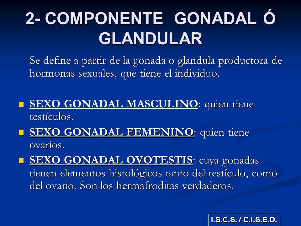 2- COMPONENTE GONADAL Ó GLANDULAR Se define a partir de la gonada o glandula productora de hormonas sexuales, que tiene el individuo. Se define a part