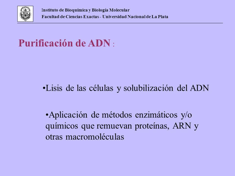 Instituto de Bioquímica y Biología Molecular Facultad de Ciencias Exactas - Universidad Nacional de La Plata Purificación de ADN : Lisis de las célula
