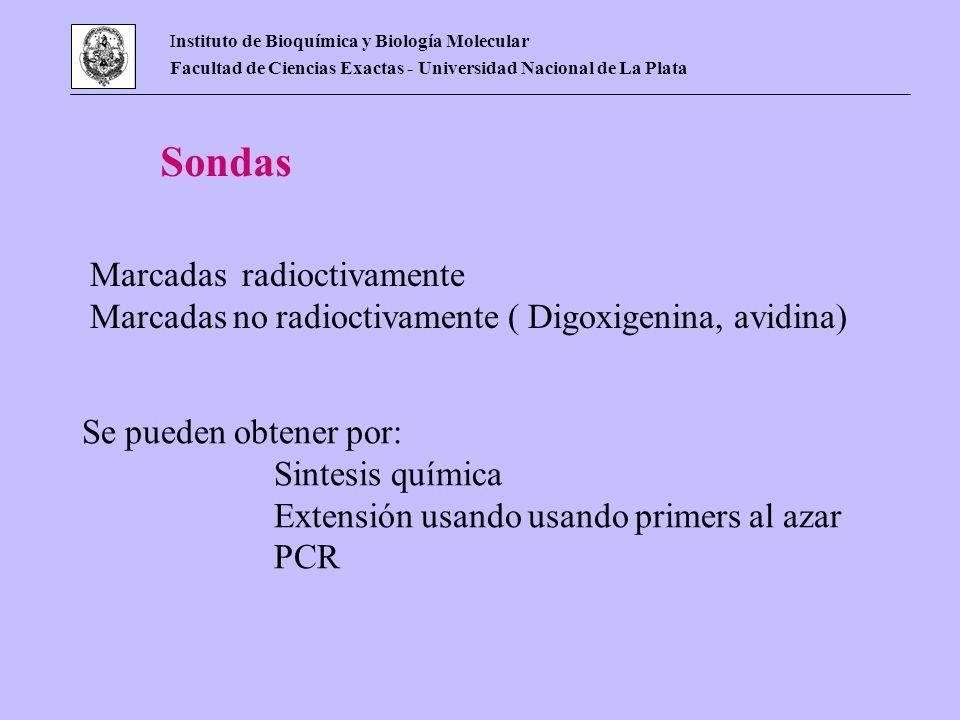 Instituto de Bioquímica y Biología Molecular Facultad de Ciencias Exactas - Universidad Nacional de La Plata Sondas Marcadas radioctivamente Marcadas