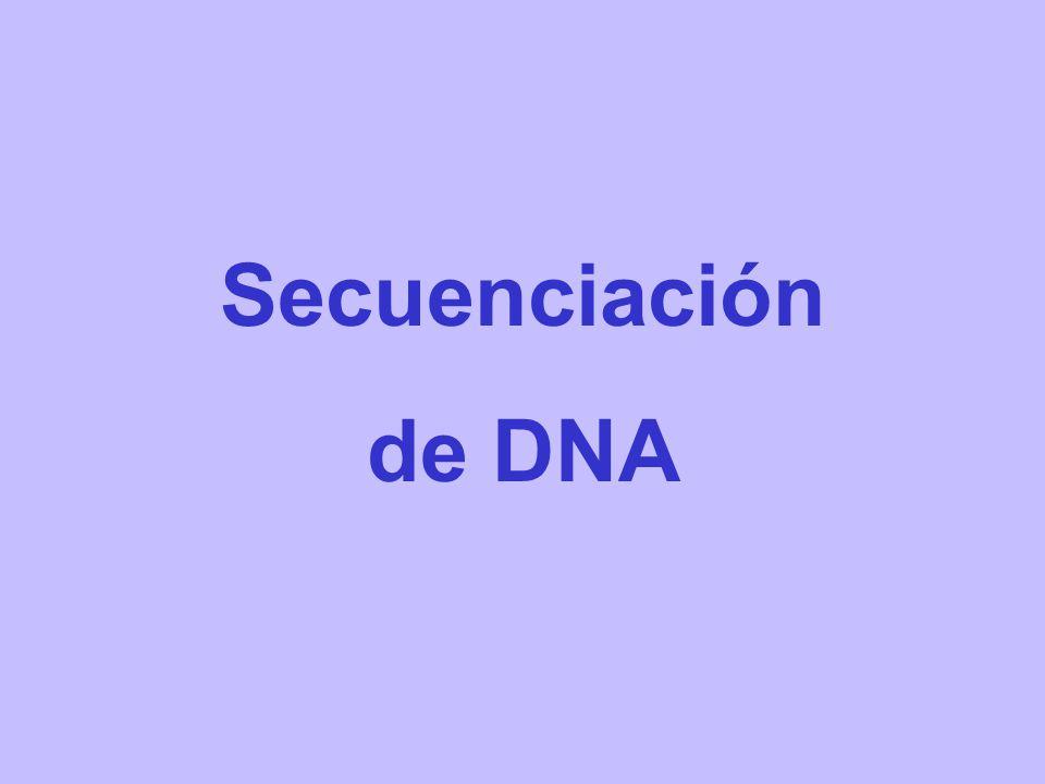 Secuenciación de DNA