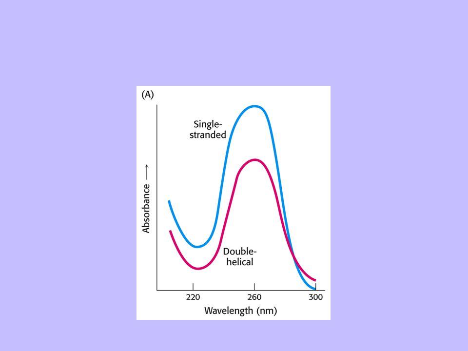 7.3 Pulsed-field gel electrophoresis separates large DNA molecules Figure 7-26