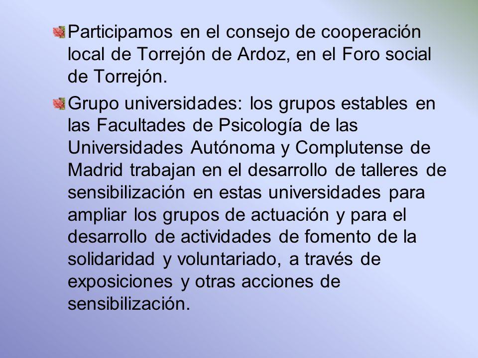 Participamos en el consejo de cooperación local de Torrejón de Ardoz, en el Foro social de Torrejón.