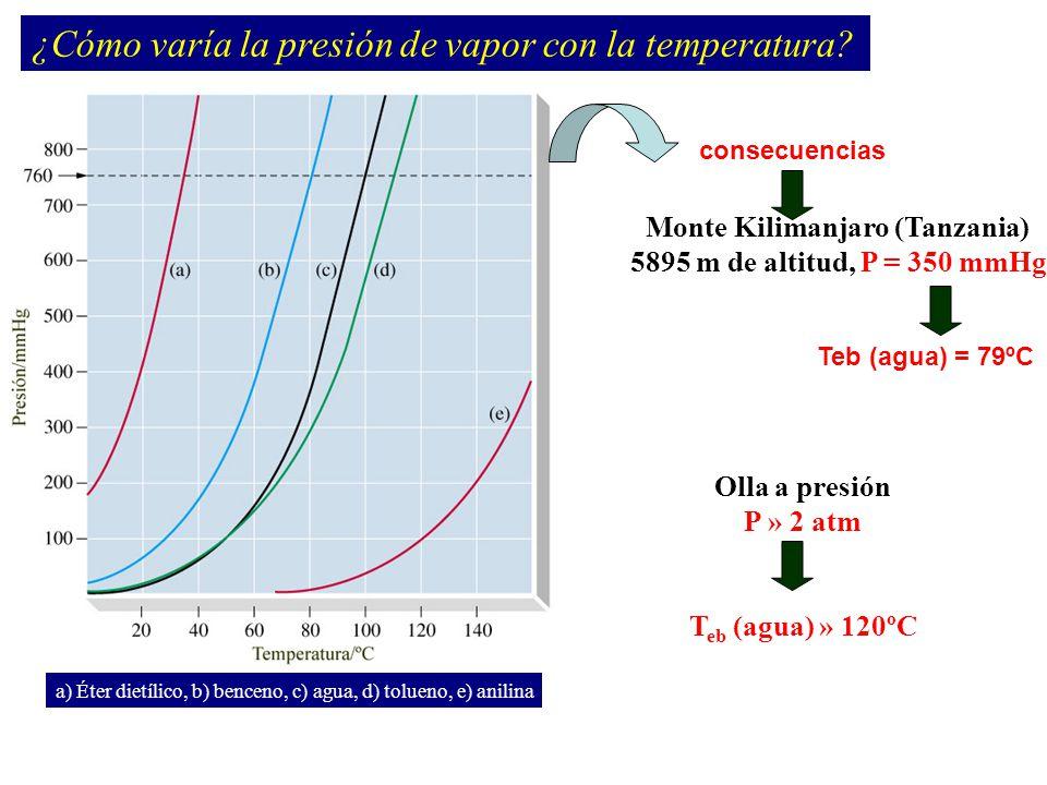 Equilibrio de Fases Aspecto cuantitativo Sistema de un componente – dos fases en equilibrio: y condición de equilibrio dG = VdP - SdT Cambio infinitesimal Ecuación de Clapeyron