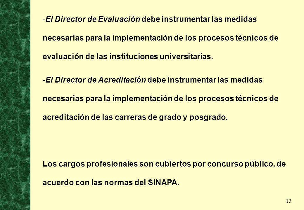 13 -El Director de Evaluación debe instrumentar las medidas necesarias para la implementación de los procesos técnicos de evaluación de las institucio