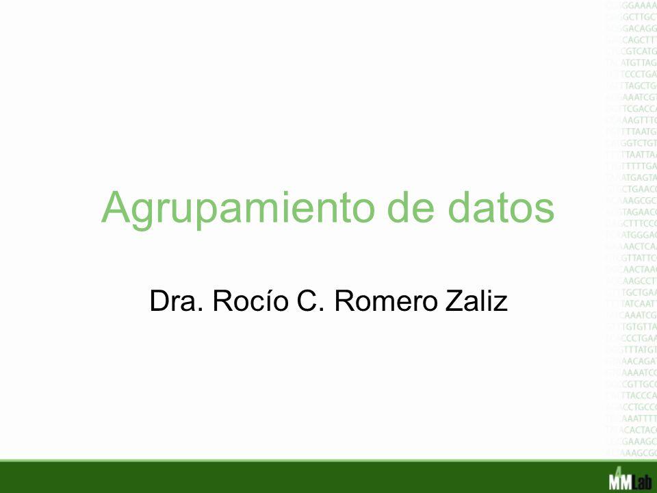 Agrupamiento de datos Dra. Rocío C. Romero Zaliz