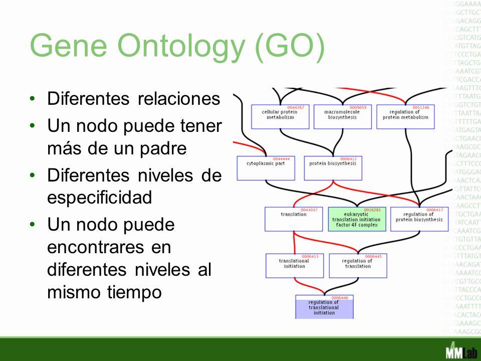 Gene Ontology (GO) Diferentes relaciones Un nodo puede tener más de un padre Diferentes niveles de especificidad Un nodo puede encontrares en diferent
