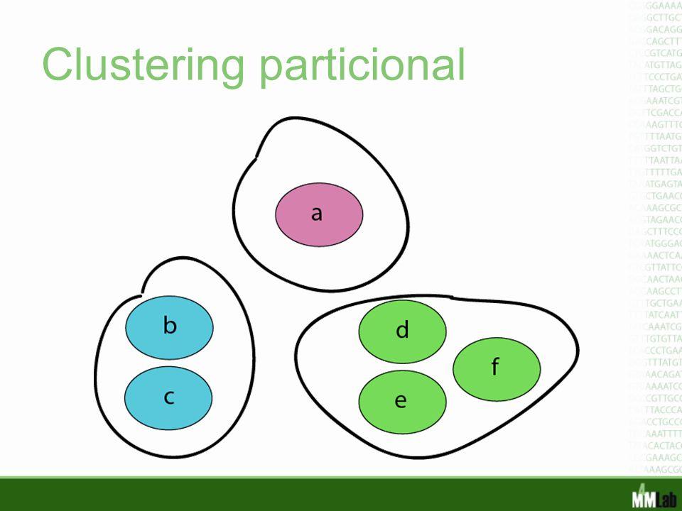 Clustering particional
