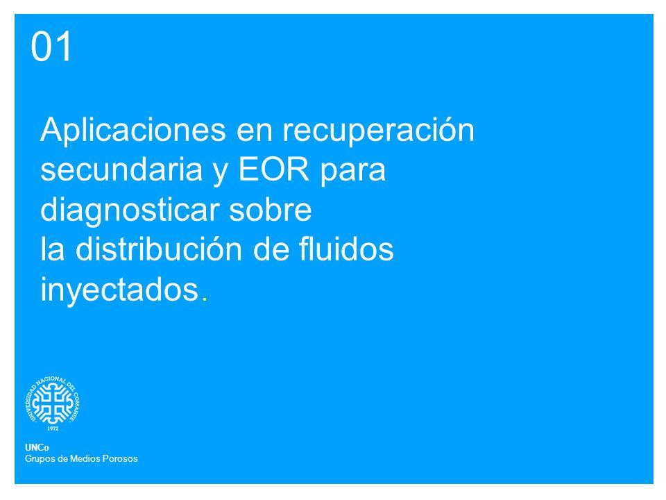 01 Aplicaciones en recuperación secundaria y EOR para diagnosticar sobre la distribución de fluidos inyectados. UNCo Grupos de Medios Porosos