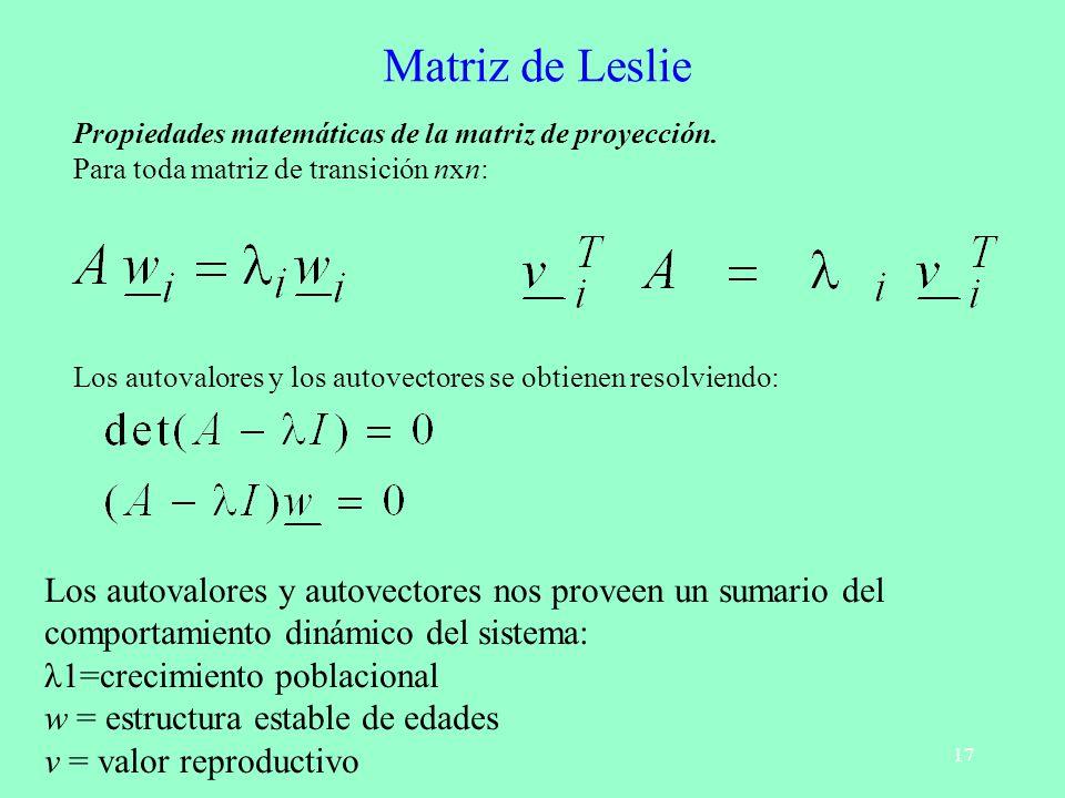 17 Matriz de Leslie Propiedades matemáticas de la matriz de proyección. Para toda matriz de transición nxn: Los autovalores y los autovectores se obti