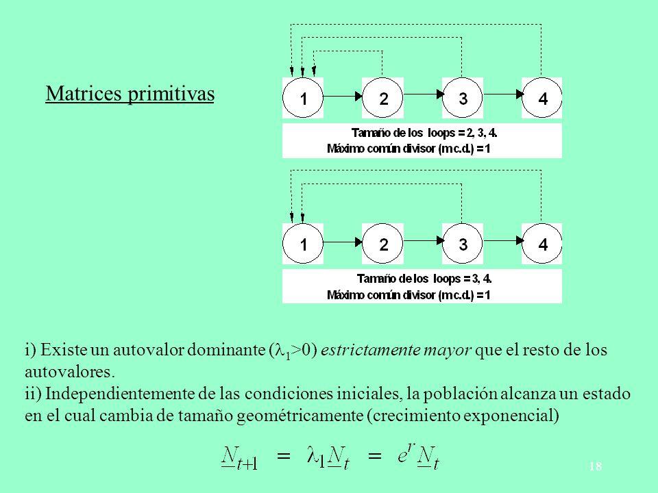 18 Matrices primitivas i) Existe un autovalor dominante ( 1 >0) estrictamente mayor que el resto de los autovalores. ii) Independientemente de las con