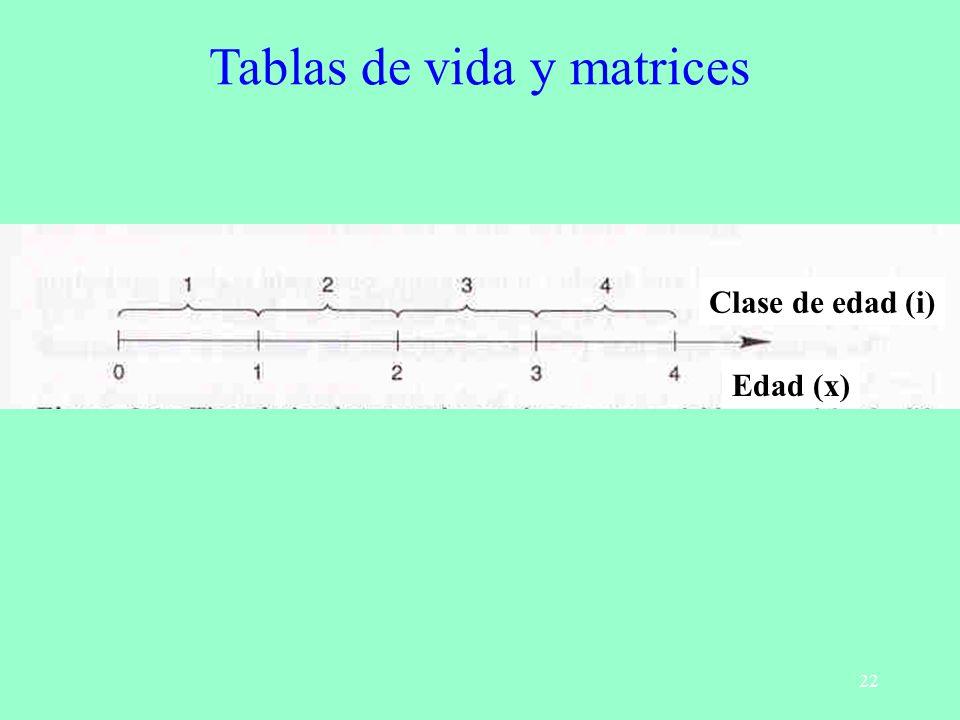 22 Tablas de vida y matrices Clase de edad (i) Edad (x)
