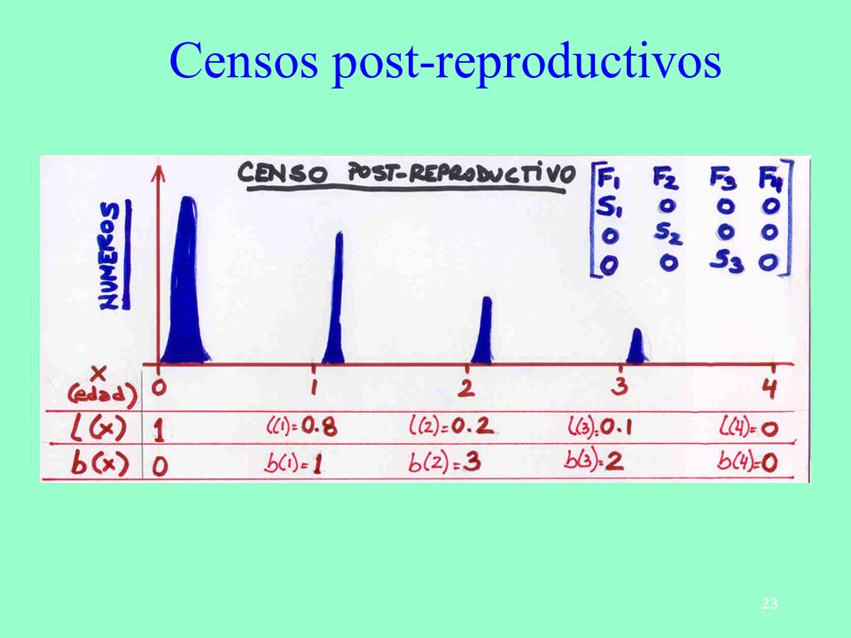 23 Censos post-reproductivos