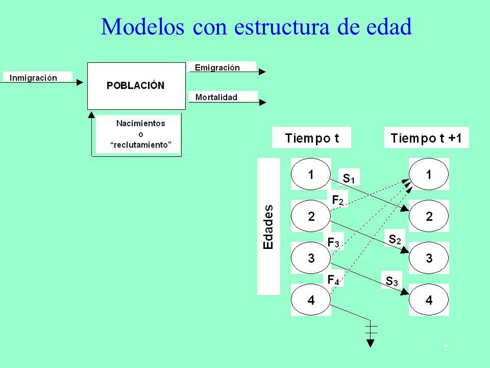 18 Matrices primitivas i) Existe un autovalor dominante ( 1 >0) estrictamente mayor que el resto de los autovalores.