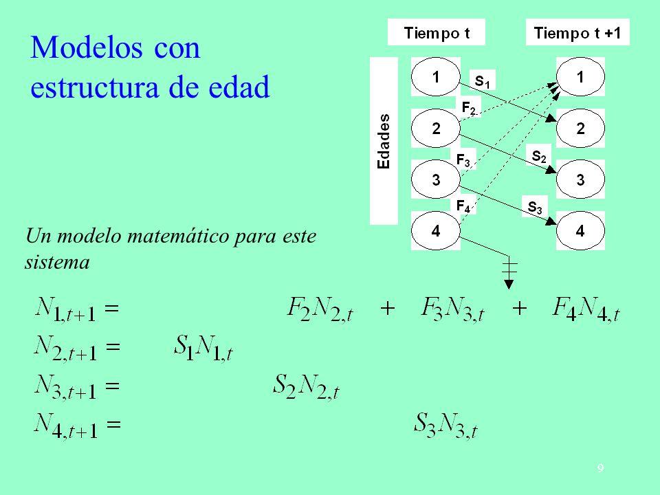 9 Un modelo matemático para este sistema Modelos con estructura de edad