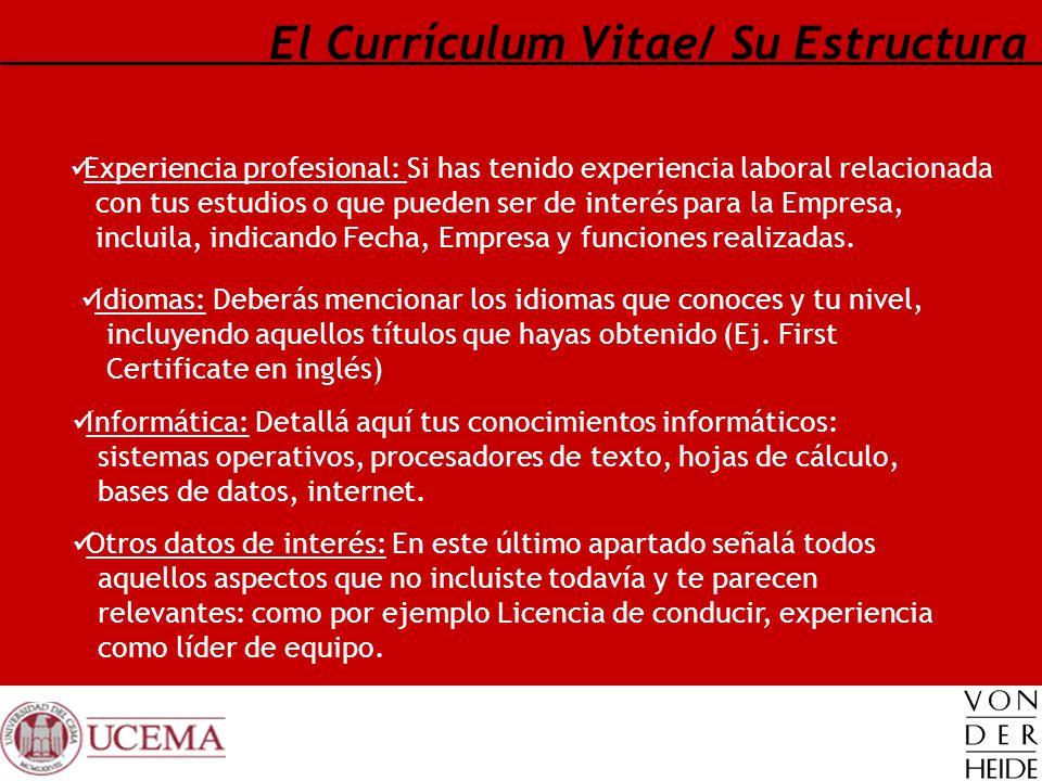 El Currículum Vitae/ Su Estructura Experiencia profesional: Si has tenido experiencia laboral relacionada con tus estudios o que pueden ser de interés
